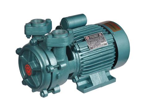 dms pumps